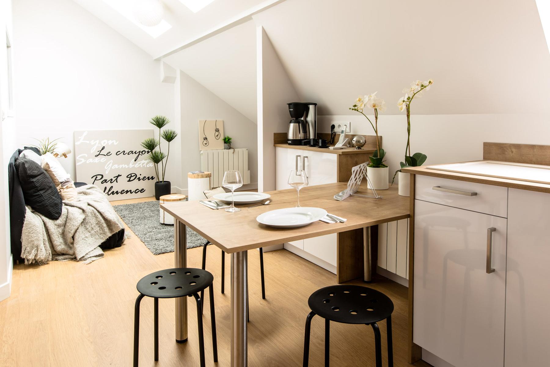 une pi ce sous les toits au coeur de lyon r nov en. Black Bedroom Furniture Sets. Home Design Ideas
